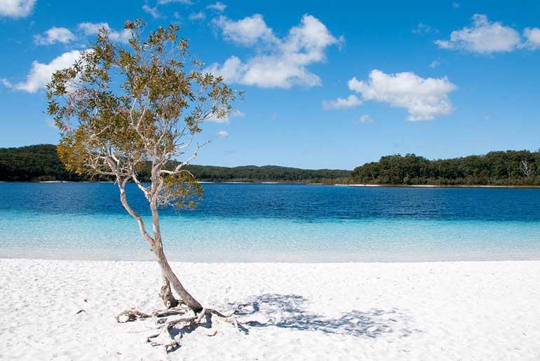 Queensland (Fraser Adası-Avustralya)