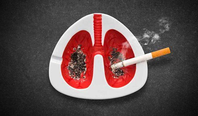 Sigaranın Sağlığa Zararları Nelerdir